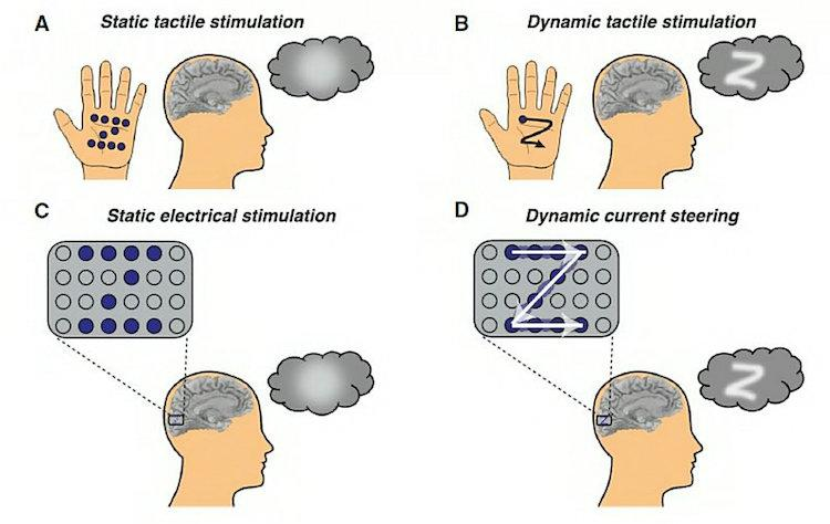 Dynamic-Stimulation-of-Visual-Cortex-Photo-by-Baylor-College-of-Medicine